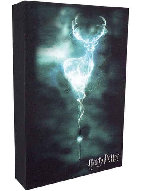 Cuadro artwork retroiluminado de Harry Potter