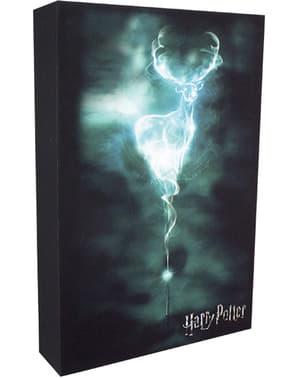 Backlit Harry Potter artwork painting