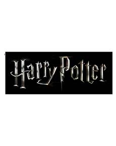 Regalos Merchandising De Harry Potter Online Funidelia
