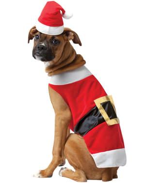 Joulupukki-asu koirille