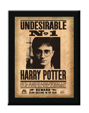 Eingerahmtes Plakat Unerwünschter Nummer 1 Harry Potter
