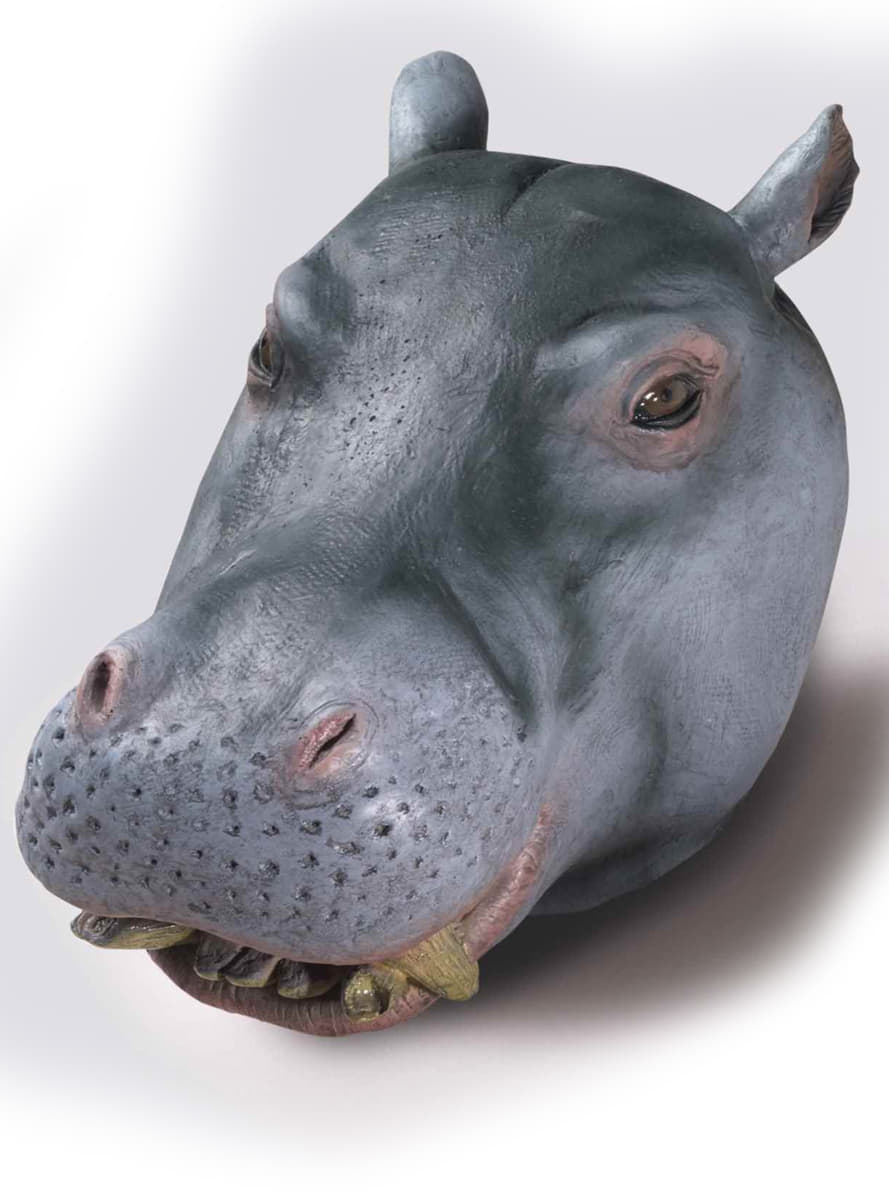 Masque Dhippopotame De Luxe Livraison 24h Funidelia