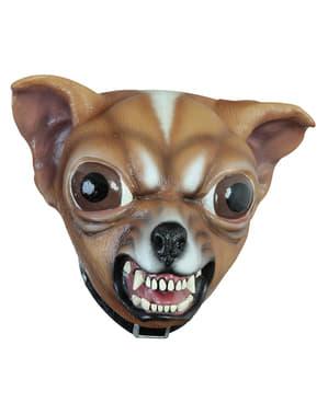 Mask hund Chihuahua för vuxen
