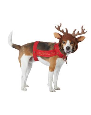Costume di Reno per cane
