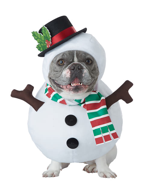 Snowman costume for dos