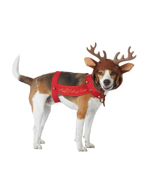 Disfraz de Reno para perro - perro