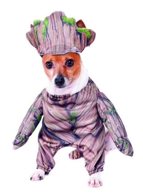 Déguisement Groot pour chien