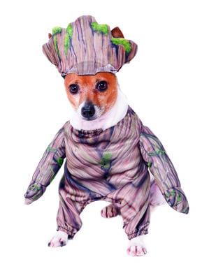 Disfraz de Groot para perro