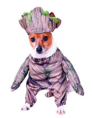 Groot Costume for dogs