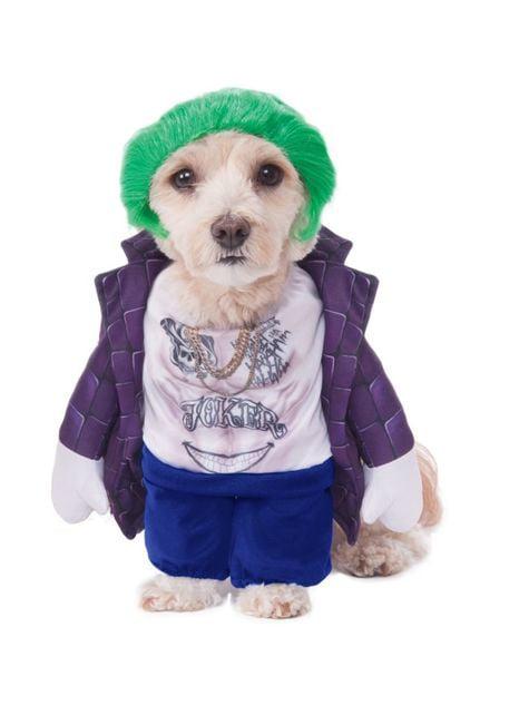 Joker Costume for dogs
