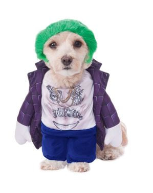 Joker kostuum voor honden