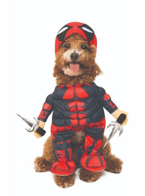 Disfraz de Deadpool para perro