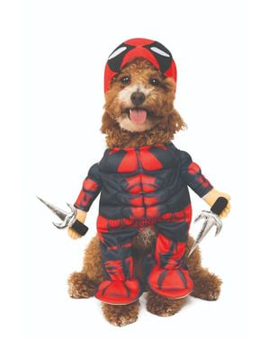 Deadpool costume for dogs
