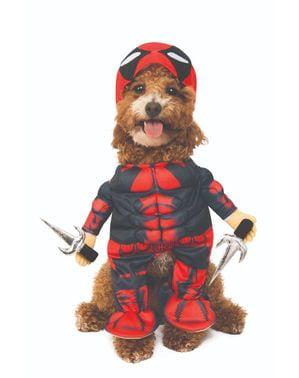Fato de Deadpool para cão