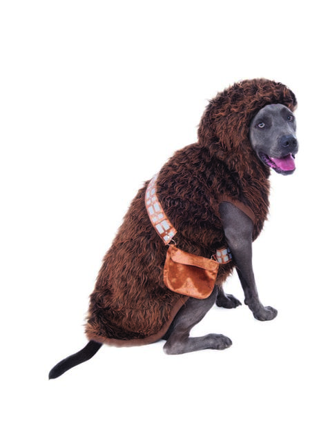 Chewbacca costume for dogs