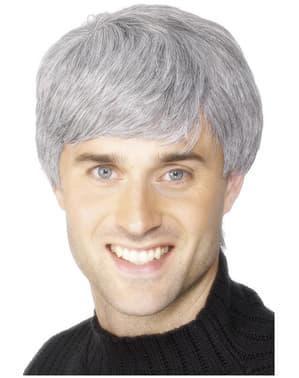 Perruque d'homme d'entreprise grise