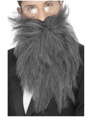 Barba comprida e bigode cinzento
