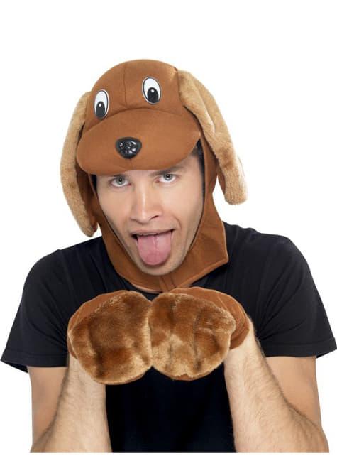 Kit de cão