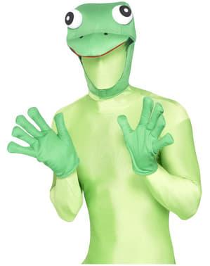 Zestaw żaba