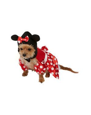 कुत्तों के लिए मिन्नी माउस पोशाक