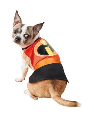 Maskeraddräkt Superhjältarna för hund