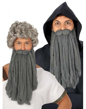 Erkekler için uzun gri yaşlı adamın sakalı