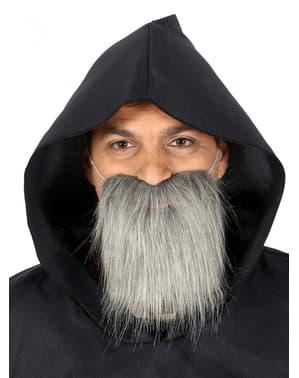 Barba media da anziano grigia per uomo