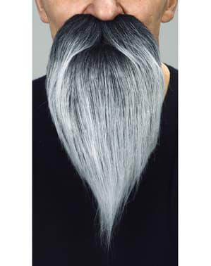 Moustache et barbe longue grise