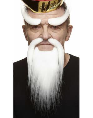 Sobrancelhas, bigode e barba de samurai idoso brancos