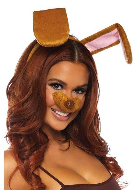 Kit accessoires chien marron femme