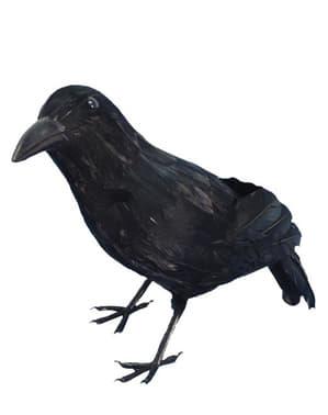 Corbeau terrifiant