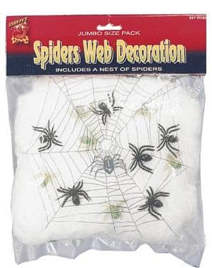 Decoratie spinnenweb met spinnen