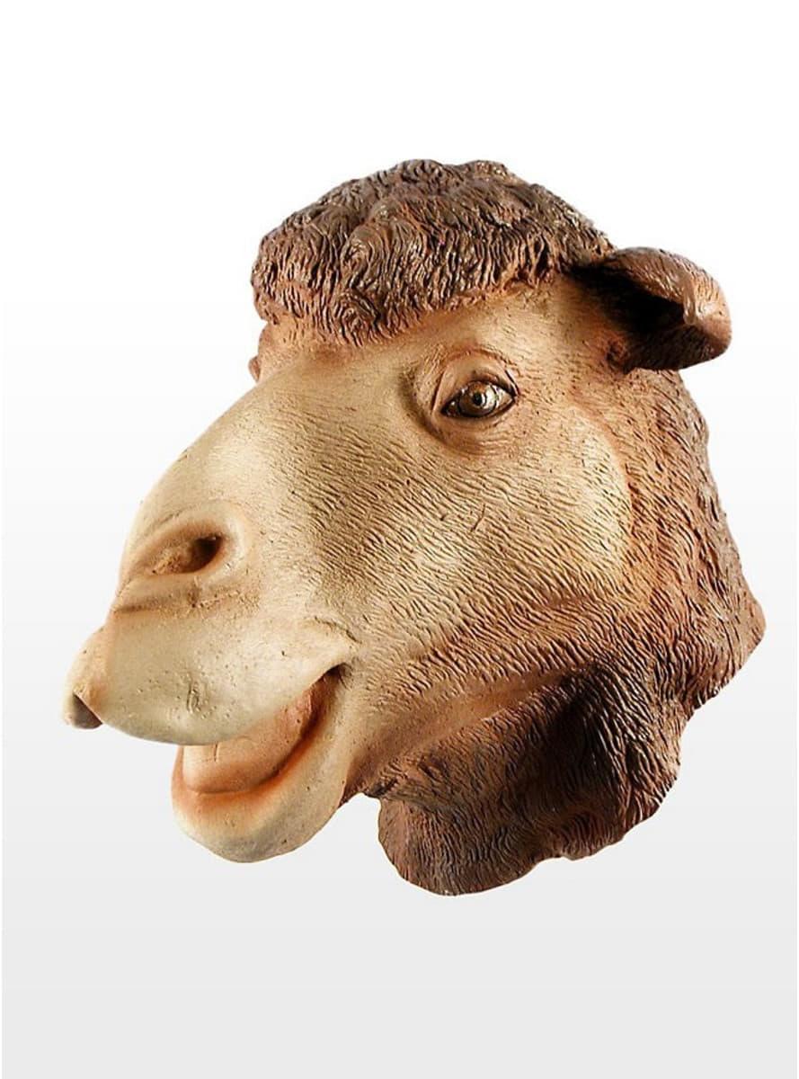 Kamel Maske Die Lustigsten Modelle Funidelia