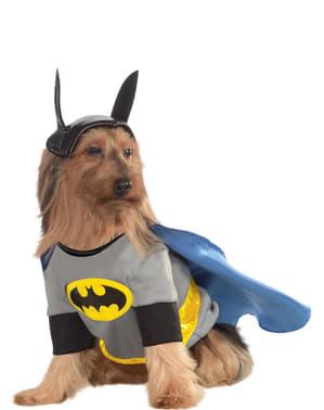 Klassisk Batman Kostyme Hund