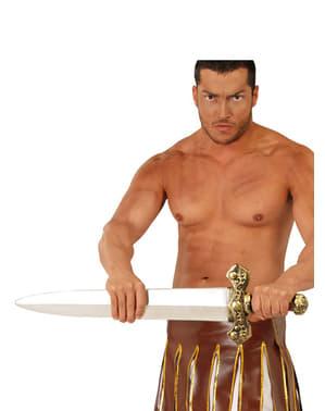 Sabie de barbar roman