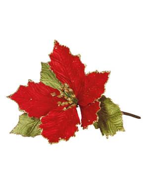Flor de Páscoa vermelha