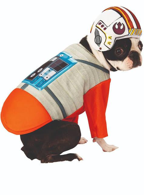 Strój dla psów Pilot X-Wing - Star Wars