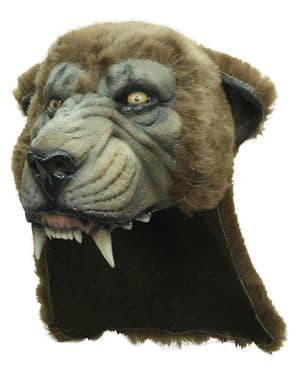 Puma Maske Kopfbedeckung
