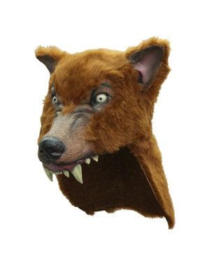 Capacete de lobo castanho