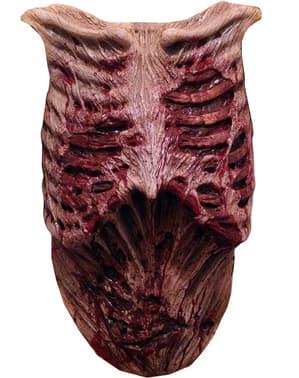 Протекцията на гърдите на зомбита