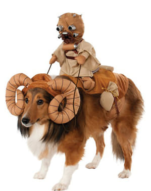 Star Wars Banta costume for a dog