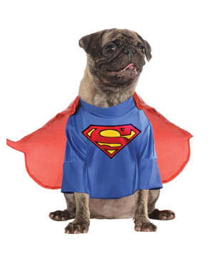 Superman costume for a dog