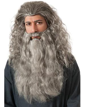 Set van Gandalf pruik en baard