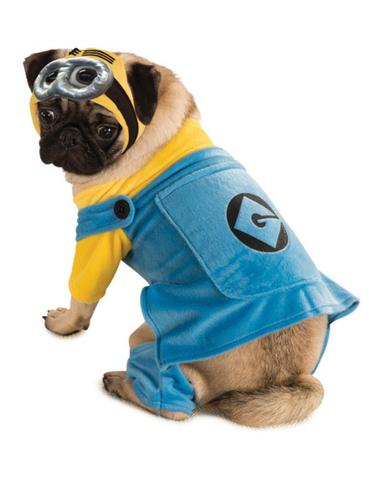 Kostuum Minion voor honden. Volgende dag geleverd | Funidelia