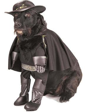 Zorro costume for a dog