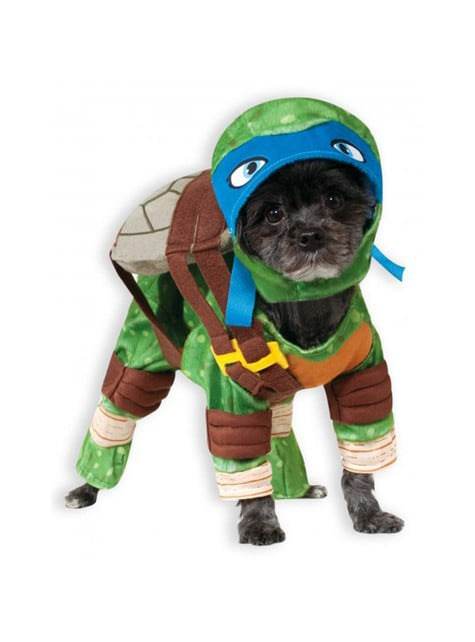 Leonardo Ninja χελώνες κοστούμι για ένα σκυλί