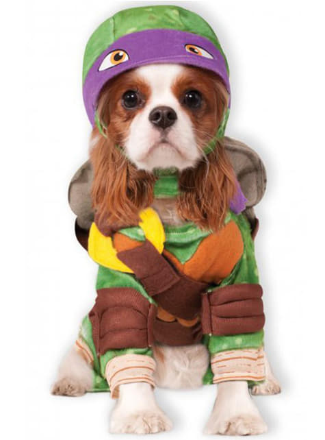 Donatello Ninja Turtles costume for a dog