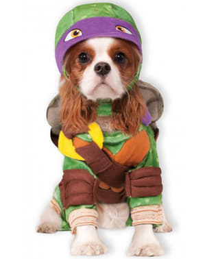 Déguisement Donatello Tortues Ninja pour chien