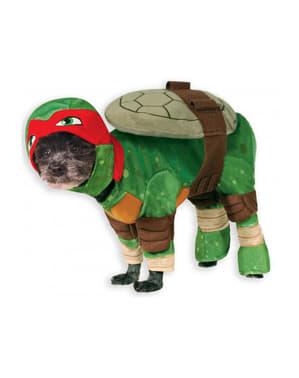 Fato de Raphael Tartarugas Ninja para cão
