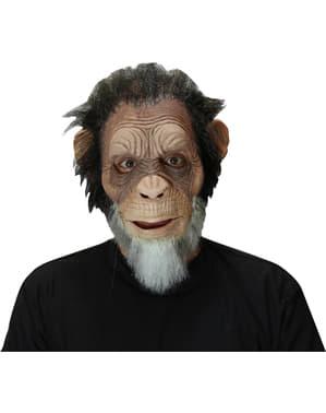 Máscara de chimpanzé idoso para adulto